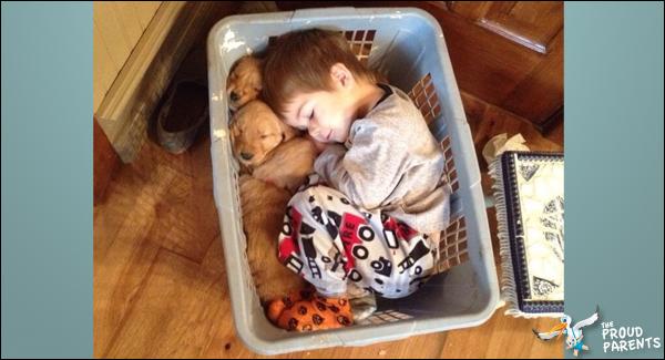 cute-overload