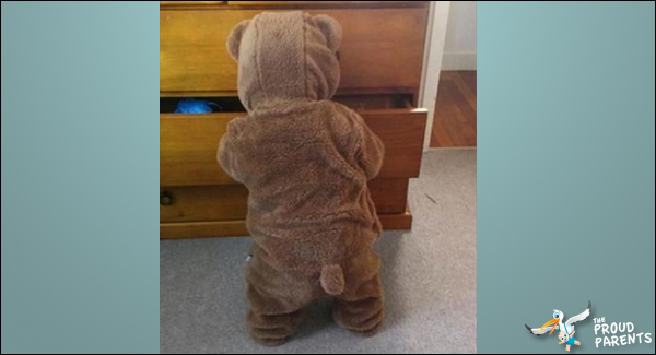 put-my-son-to-sleep-in-his-onesie-woke-up-to-a-bear-raiding-my-drawers