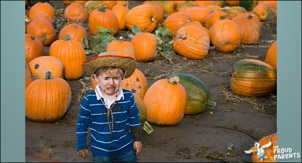 bad-day-at-the-pumpkin-patch-you-don't-wanna-know